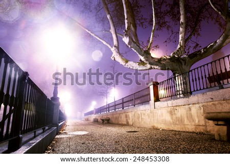 City street at night .Trees,wall and lamppost - stock photo