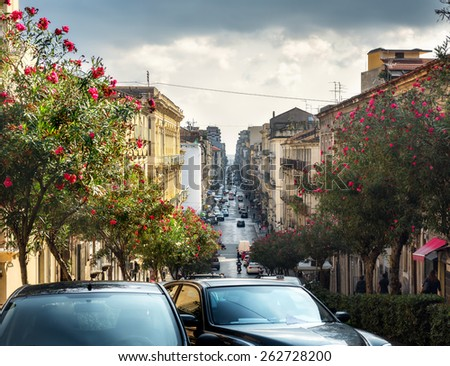 Cityscape with beautiful flowering trees, buildings and street traffic. Catania, Sicily, Italy.  - stock photo