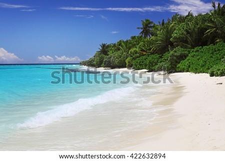 classic idyllic beach scene with sea and trees - stock photo
