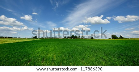 classic rural landscape. Green field against blue sky - stock photo