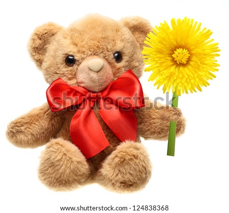 Classic teddy bear with red bow and flower isolated on white background. - stock photo