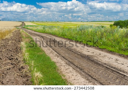 Classic Ukrainian summer landscape with corn fields and road - stock photo