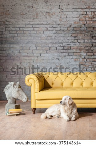 classic yellow sofa living room statue with brick wall and dog - stock photo