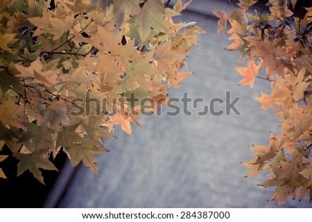 classical autumn--building - stock photo