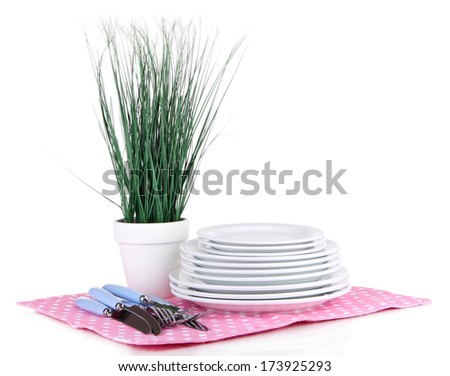 Clean dishes with flower isolated on white