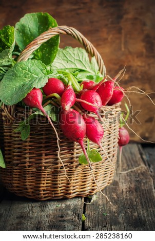 Clean Fresh Organic Radish in an old Basket. Wooden background, rustic style, selective focus - stock photo