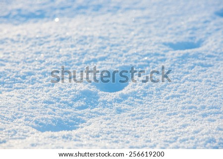 Clean of snow - stock photo