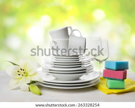 Clean tableware, dishwashing sponges and lily flower over abstract background - stock photo