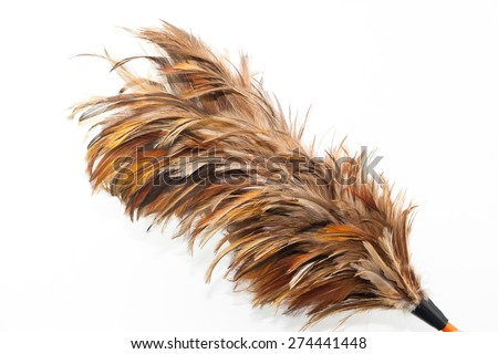 Cleaner feather isolate background