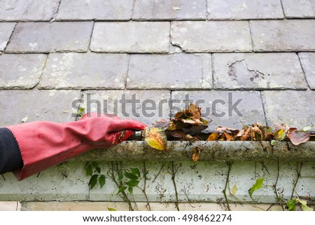 cleaning gutter blocked with autumn leaves