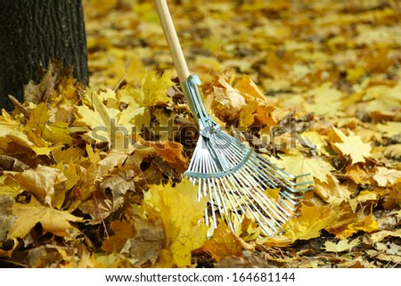 Cleaning of autumn leaves in park - stock photo