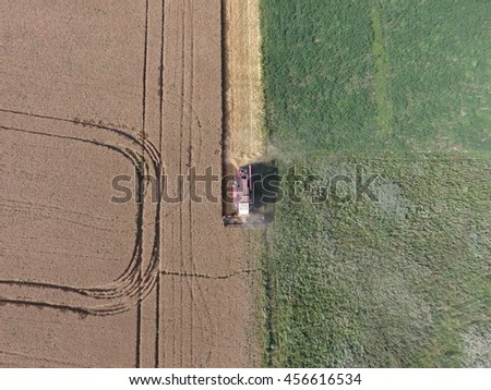 Cleaning wheat harvester. Ripe wheat harvester mowed and straw easily sprayed behind him. - stock photo