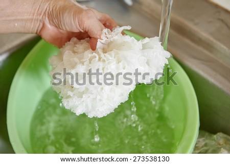 Cleaning white jelly mushroom on running water - stock photo