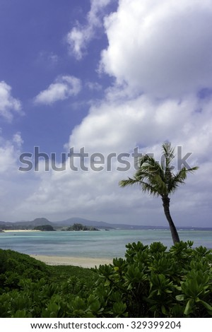 Clear blue water, coral reef and deserted white sand tropical beach, Okinawa, Japan