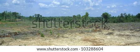 Clear cutting in the Blue Ridge Mountains, Virginia - stock photo