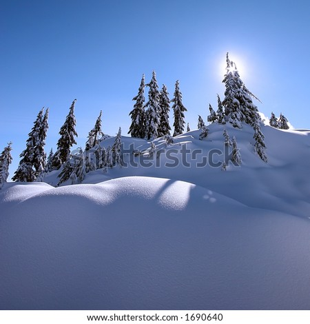 Clear Day - stock photo