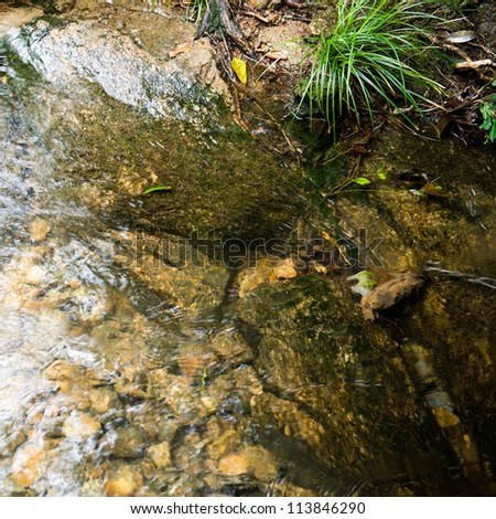 clear water in pond the pond. - stock photo