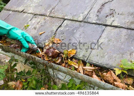 clearing gutter blocked with autumn leaves