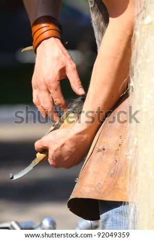 clearing hoofs - stock photo