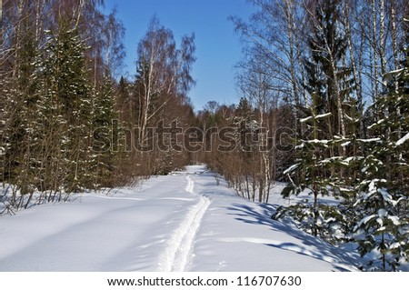 Clearing with ski track in winter forest