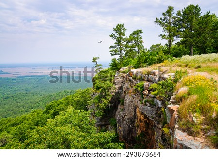Cliff at Petit Jean State Park - stock photo