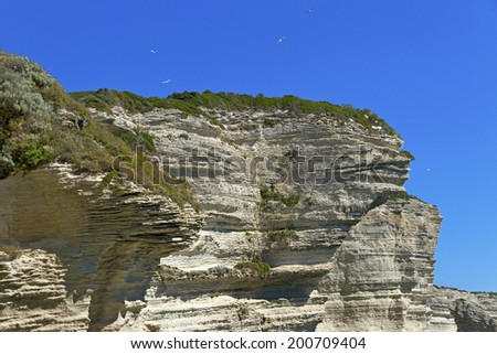 Cliff in Bonifacio at the Mediterranean Sea.