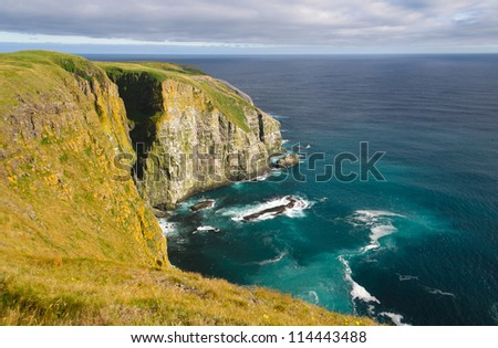 Cliff of Cape St Mary in Newfoundland in sunlight - stock photo