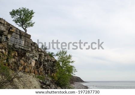 Cliffs and an alone tree by coastline at the swedish island Oland - stock photo