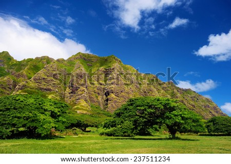 Cliffs and trees of Kualoa Ranch, Oahu, Hawaii - stock photo