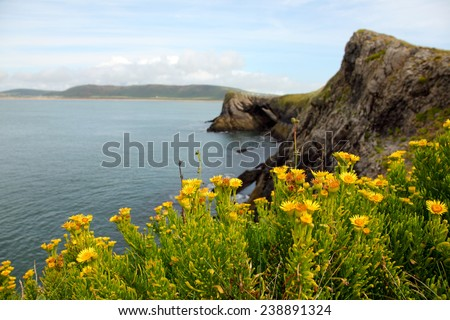 Cliffs at Rhossili bay in the Gower, South Wales, UK - stock photo