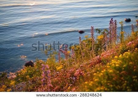 Cliffs at the coast in Paldiski, Estonia - stock photo