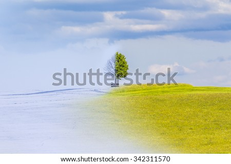 Climate change from winter to summer time over the year. Nature weather visual with a single tree on a hill. Cold snow has a transition to a warm meadow. Icy branches have a transition to juicy leaves - stock photo