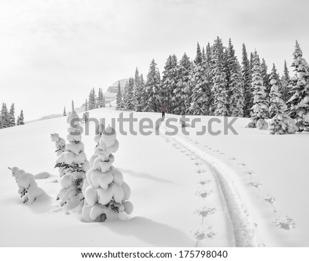 Climb in fresh snow along a ridge in the Teton's.  A quiet winter scene.  - stock photo