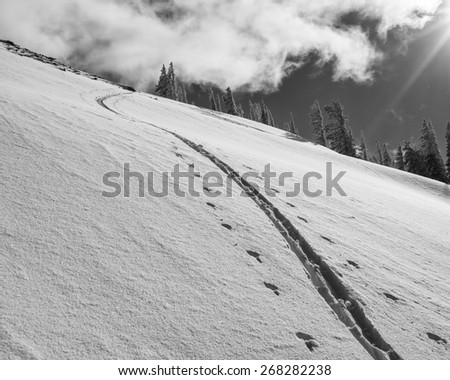 Climb in fresh snow uphill in the Tetons.  A sunny winter scene.  - stock photo