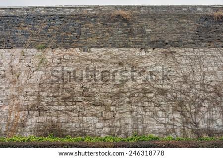 Climbing plants on Nanjing city stone wall in Nanjing City of Jiangsu Province, China - stock photo