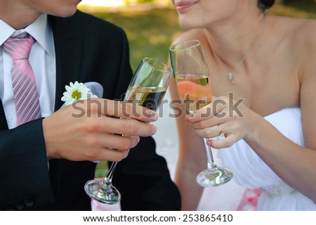 Clink of glasses. Wedding reception. Toast. Cheers. - stock photo