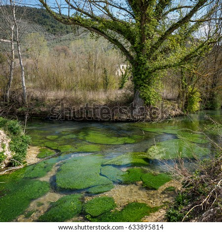 Clitunno river close to the town of Campello in Umbria (Italy).