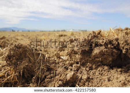Close on a freshly plowed field revealing rich, organic soil/Rich, Organic Soil/Close on a freshly plowed field revealing rich, organic soil.  - stock photo