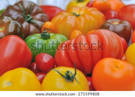 close on a red tomatoes with other varieties and colors - stock photo