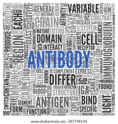 Close up ANTIBODY Text at the Center of Word Tag Cloud on White Background.