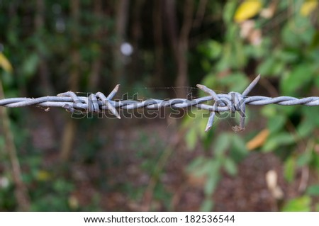 Close up Barbed Wire Entanglement Detail - stock photo