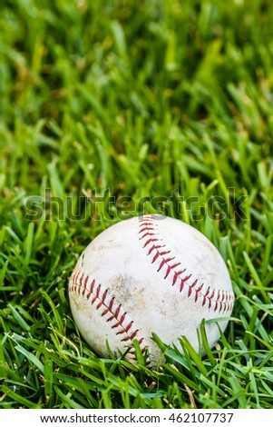 Close up baseball on the green grass background/Selective focus