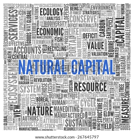 Close up Blue NATURAL CAPITAL Text at the Center of Word Tag Cloud on White Background.