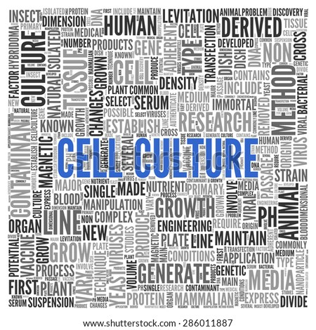 Close up CELL CULTURE Text at the Center of Word Tag Cloud on White Background.