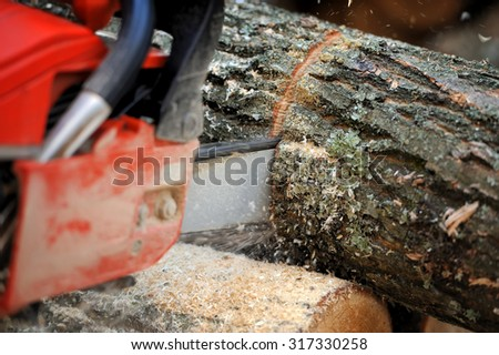 Close-up chainsaw and many tree trunks - stock photo