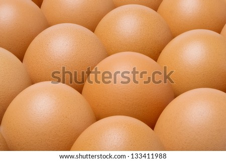 Close up chicken eggs in tray - stock photo