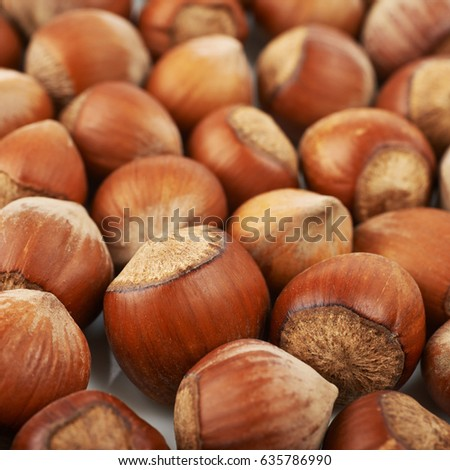Close-up crop of a surface coated with the hazelnuts as a food backdrop composition with a shallow depth of field