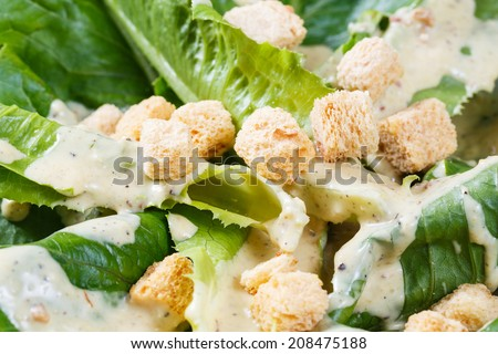 Close up croutons and cos vegetable on caesar salad dish - stock photo