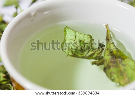 close up dry stevia rebaudiana (Bertoni) leaves in the cup Properties