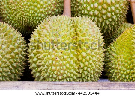 Close up Durian Mon Thong in Thailand market for selling - stock photo